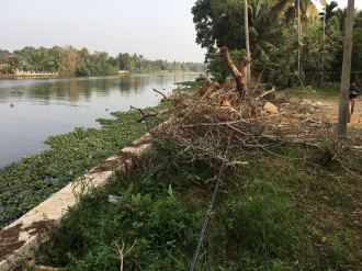 Residential Land for Sale in Alleppey, Kuttanad, Champakkulam