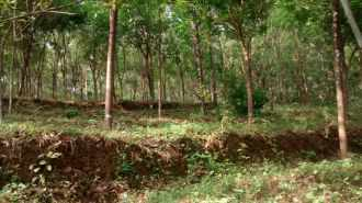 Agricultural Land for Sale in Kottayam, Erattupetta, Chalamattom, Konipad