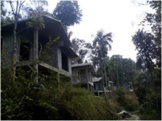 Commercial Other for Sale in Wayanad, Wayanad, Wayanad