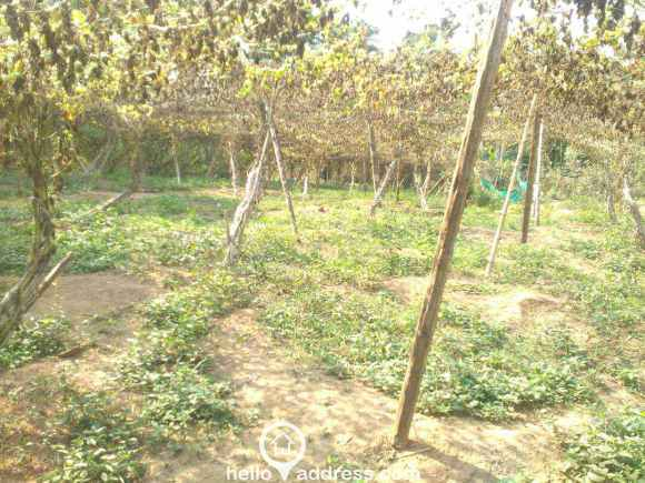 Residential Land for Sale in Idukki, Kattappana, Pampadumpara