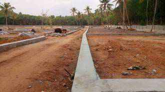 Residential Land for Sale in Trivandrum, Venjaramoodu, Venjaramoodu