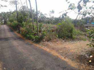 Residential Land for Sale in Ernakulam, Kizhakkambalam, Kizhakambalam, Pattimattom