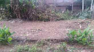 Commercial Land for Sale in Kottayam, Kottayam, Pallom, Post office