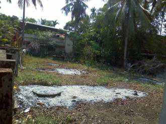 Residential Land for Sale in Ernakulam, Paravur, Kottuvally, Near Thrikkapuram Temple