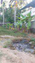 Residential Land for Sale in Trivandrum, Thiruvananthapuram, Kalady, Kalady South
