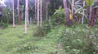 Residential Land for Sale in Thrissur, Irinjalakuda, Aripalam, Edakulam