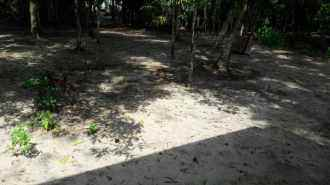 Residential Land for Sale in Alleppey, Alapuzha, Town, poonkavoo