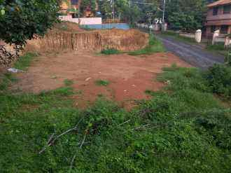 Residential Land for Sale in Pathanamthitta, Omalloor, Manjanikkara, Manjinikara