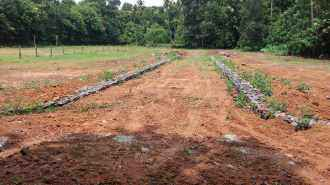 Residential Land for Sale in Ernakulam, Angamaly, Azhakam, Mookanoor