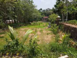Residential Land for Sale in Kottayam, Changanassery, Kurumbanadam