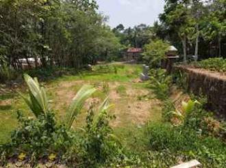 Residential Land for Sale in Kottayam, Changanassery, Kurumbanadam