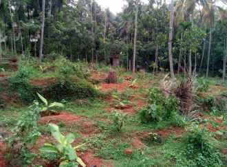 Residential Land for Sale in Kozhikode, Perambra, Changaroth