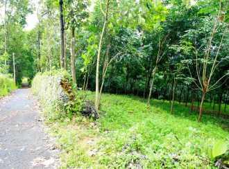 Agricultural Land for Sale in Ernakulam, Kothamangalam, Pindimana