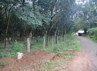 Residential Land for Sale in Pathanamthitta, Adoor, Nellimukal