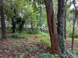 Residential Land for Sale in Malappuram, Perinthalmanna, Mankada