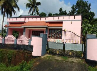 Residential House Villa for Sale in Kollam, Kottarakkara, Odanavattam