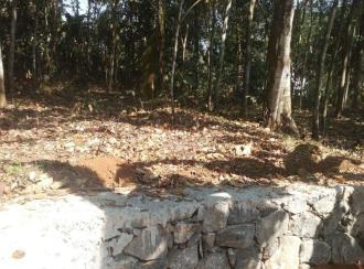 Residential Land for Sale in Pathanamthitta, Pathanamthitta, Puthenpeedika